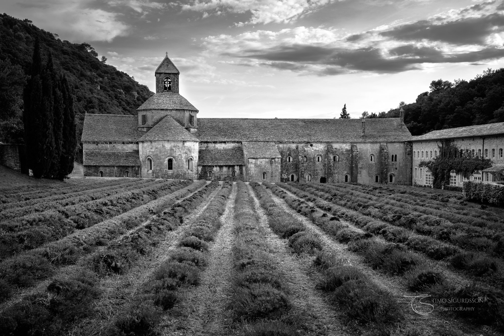 Abbey Notre-Dame de Sénanque, Gordes, Provence, France.